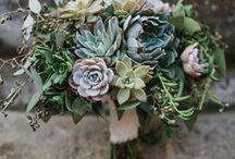 Organic Index | Botanical / Floral botanical inspiration