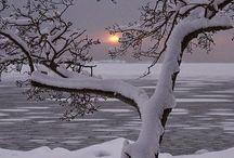 Invierno... / El frío...