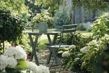 Have / garden / I love gardenlife