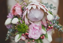 Australian Native Bouquets / Proof that native bouquets are not only sustainable but beautiful!