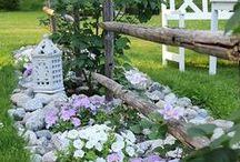 Garden / Garden ideas, hints and beautiful photos