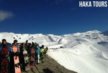 NZ Snow Tours / Find us at http://hakatours.com/snow for NZ's Top Rated Snow Tours. / by Haka Tours