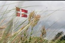 Det ka' Danmark / Small and large products off the Danish society.  Denmark.