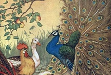 Fairy Tales, Fables & Other Stories / Classic illustrations from classic tales