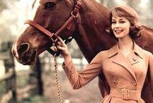 Inspo. Classic horse