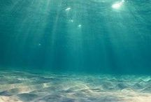 Sea, beach, lake, river / water... water everywere