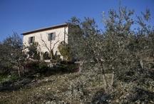 Italy, Umbria - Casa Margherita / www.casa-margherita.com