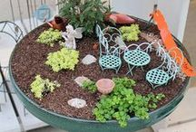 Mini Gardens / by Grizzly Jill