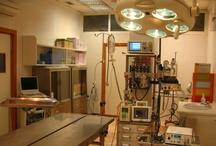 Instalaciones Hospital veterinario Cruz Cubierta / Imágenes del interior de nuestras instalaciones.