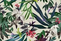 JAN | Tropical / Pattern designs and developmental work based on a Tropical theme.