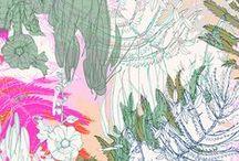 AUG   Line work / Pattern designs and developmental work based on a Birdlife theme.