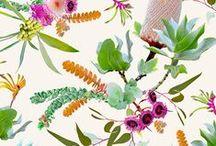 SEP   Garden / Pattern designs and developmental work based on a Garden theme.