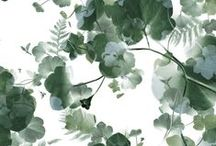 NOV   Porcelain / Pattern designs and developmental work based on a Porcelain theme.