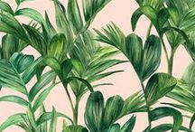 APR | Foliage / Pattern designs and developmental work based on a Foliage theme.