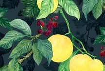 MAR   Harvest / Pattern designs and developmental work based on a Harvest theme.
