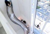 House Slides!(I wish)