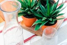 Decoración / ¿Necesitas ideas? Convierte tu hogar en un lugar muy especial con Verdecora