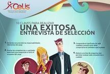 Empleo y Trabajo / Ayuda para las personas en proceso de búsqueda de empleo
