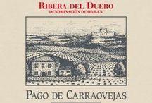 Pago de Carraovejas / Muy cerca de Peñafiel, en las pendientes del valle que forma el arroyo Botijas, existe un lugar privilegiado para el cultivo de la uva…