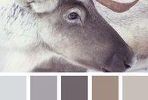 Geïnspireerd door grijs / Betoverd door grijs. Niet saai, maar mysterieus en vol met nuances.
