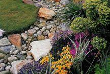 Garden / Gardening