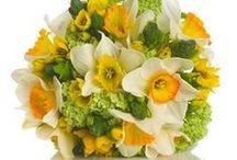 Bouquet - Floral arrangements