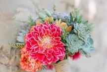 Flowers / by Elizabeth Warman