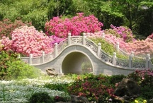 Secret~Gardens / Scatter seeds of kindness where ever you go. / by Karen Stevens