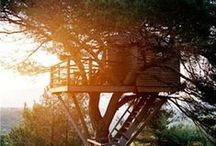 -- TREEHOUSE --