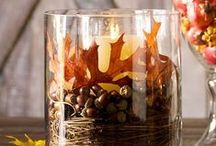 Fall Decor We Love / by Northeastern Events