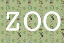 ZOO / De behangserie ZOO telt vijf dierenbehangen samengesteld uit verschillende zoölogische en botanische collecties.  Op de behangen komen de prachtige, sfeervolle, uitbundige tekeningen, die soms meer dan 200 jaar oud zijn, opnieuw tot leven.  De behangen zijn te koop via www.studiooctopus.nl/zoo of magazinamsterdam.nl. In de winkel van Magazin is het 'vogelbehang' op grootformaat aan de muur te zien. In de winkel ligt ook een stalenboek.