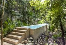 TAO Wellness Center / TAO WELLNESS CENTER  Located in a lush jungle landscape and designed with modern elegance and a natural simplicity, the TAO Wellness Center is the Riviera Maya's most innovative and complete space for programs, services and special events relating to health, personal growth and total well-being. The Center is led by our CEO, Jonathan Ellerby PhD, a best-selling author and internationally recognized expert on holistic health.
