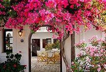 Spanish Colonial / Hacienda Style / spanyol gyarmati stílus