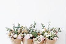 Flowers / Garden flowers  | Roses | Flowers arrangements | Wedding flowers | white flowers | flowers photography | Wild flowers | Fall flowers | tulips | Fall flowers | Spring flowers | Beautiful flowers | Tropical flowers | Peonies | Doodles