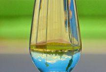 In vino veritas / Vinos blancos..bodegas,uvas,tiendas....
