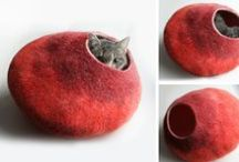 Pastry / For the Cat