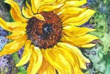 Floral Paintings on Yupo /  I hope you enjoy these garden inspired paintings. All are done by me in transparent watercolor or alcohol ink on Yupo paper. Yupo, (pronounced You-poe), is a durable, recyclable, tree-free, synthetic paper which does not absorb water, so the transparent watercolor pigments sit on top of the surface. Follow the link on each picture to my blog at http://www.SandySandyArt.com or my website at: http://www.SandySandyFineArt.com for more information.