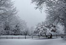 Photo: Winter & christmas