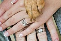 Wedding Ideas / by Joanne St. Laurent