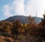 Sitno, Slovakia / Mountain