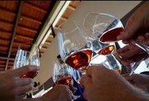 Cheers to Wine! / Enjoying wine around the world