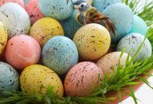 Pretty Easter Eggs / by Velma Hoefgen