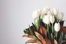 Flowers. / by Mandy Blac.