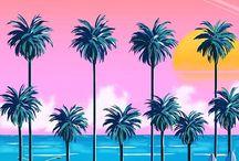 Miami,my LOVE ✈️
