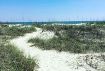 Pawleys Cottage Living / Life at the beach in coastal Carolina