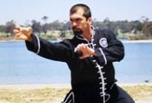 Martial Arts / All styles of matial arts. / by El Rome