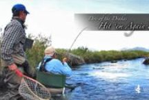 Our Fly Fishing Videos / Short films produced by fishbite media.