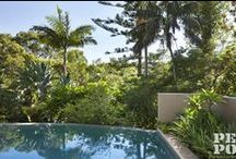 A SNAPSHOT OF PEPO GARDENS / A collection of gardens design, constructed and maintained by Pepo Botanic Design