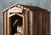 Home & Garden: Pets Edition