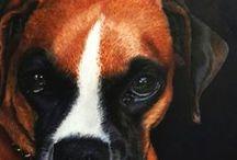 Sssk Coloured Pencil Art (pets/animals)
